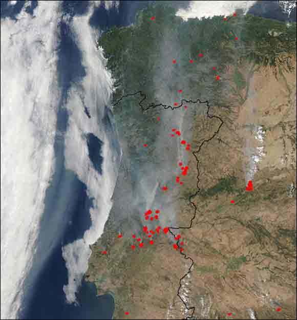 forest fires in Portugal 2003