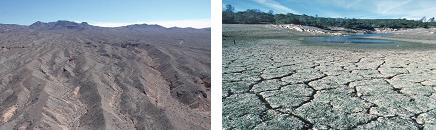 arid zone and drought