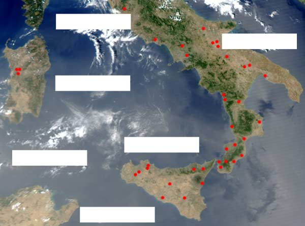 forest fires in Southern Italy 2003