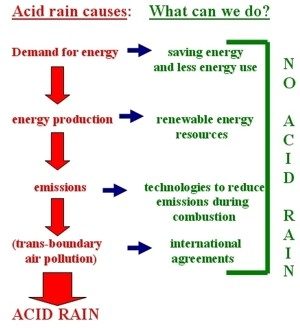 an analysis of the causes of acid rain and the effects of acidity What is acid rain and what causes effects of acid rainacid rain causes acidification of lakes and frogs may tolerate relatively high levels of acidity.