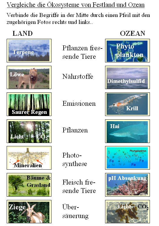 Ziemlich Ozean Arbeitsblatt Kindergarten Zeitgenössisch - Mathe ...