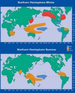 Temperature effect of El Niño