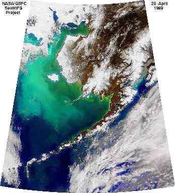 coccolithophore bloom in the Bering Sea